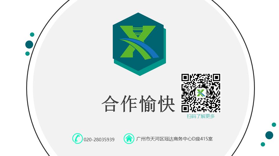 新通桥简介1.png